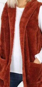 NWT Rust Super Soft Pocketed Vest with Hood